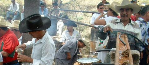 Una nueva ruta en capital mexicana acerca la tradición y sabores del mezcal