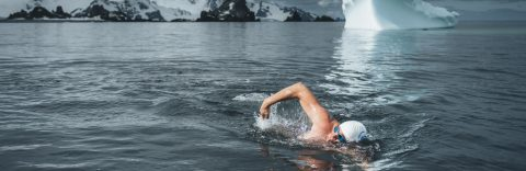 Activist swims in Antarctic waters as part of ocean protection campaign