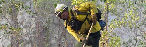 Declaran estado de desastre en seis condados de Texas por incendios