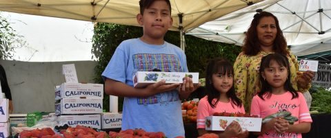 US doctors prescribe fruit, vegetables for Latinos with malnutrition