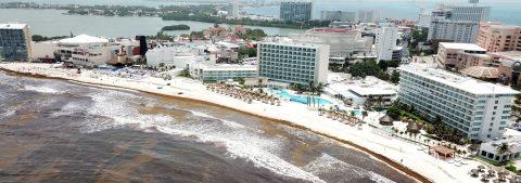 Playas del sur de México buscan proteger su turismo ante gran arribo de algas