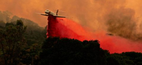 Eight Dead, 93,000 hectares burned by California wildfires