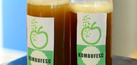 Crean bebida fermentada que reduce niveles de glucosa y presión