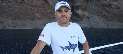 Mexican biologist spends life studying great white sharks