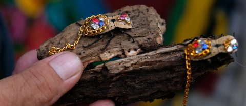 Bedazzled live beetle a symbol of doomed love in Mexico's Yucatan