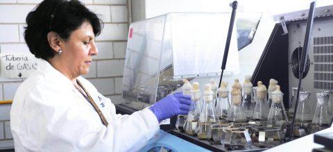 Científicos desarrollan proteínas para proteger de listeriosis