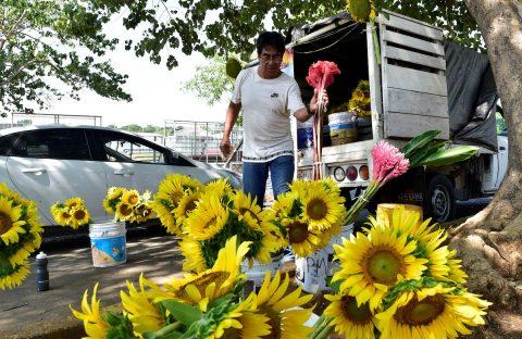 La vida del primer chófer de López Obrador, hoy un florista que busca empleo