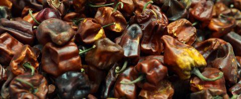 El 60 % de los chiles verdes consumidos en México vienen de China