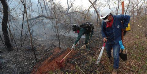 Soldados y voluntarios, los héroes que luchan contra el fuego en Bolivia