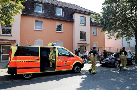 Alarma en Alemania por una cobra que se ha escapado de una vivienda