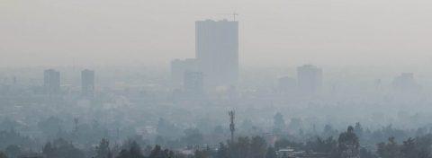 La contaminación ambiental puede contribuir a trastornos neuropsiquiátricos