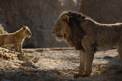 """Regístrate para concursar y ganar un premio especial de """"THE LION KING"""""""