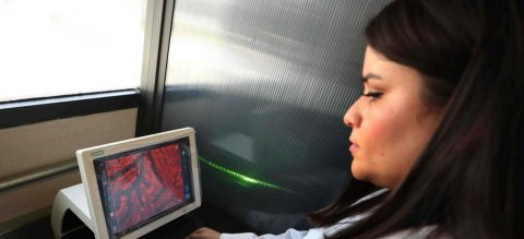 Investigadores mexicanos desarrollan tratamiento innovador contra el melanoma