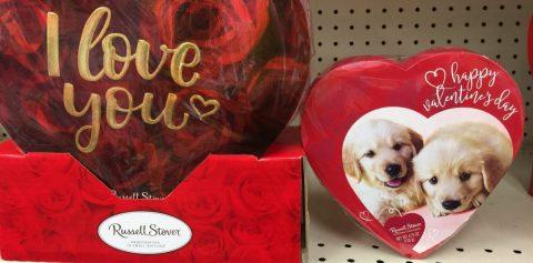 El amor y la cartera también van de la mano en el San Valentín de los perros