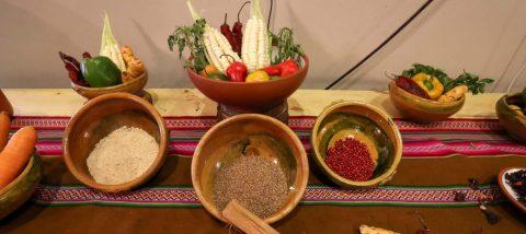 Un concurso juvenil va al encuentro de recetas y sabores ocultos de Bolivia