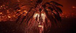 Los dos incendios más recientes en California siguen descontrolados