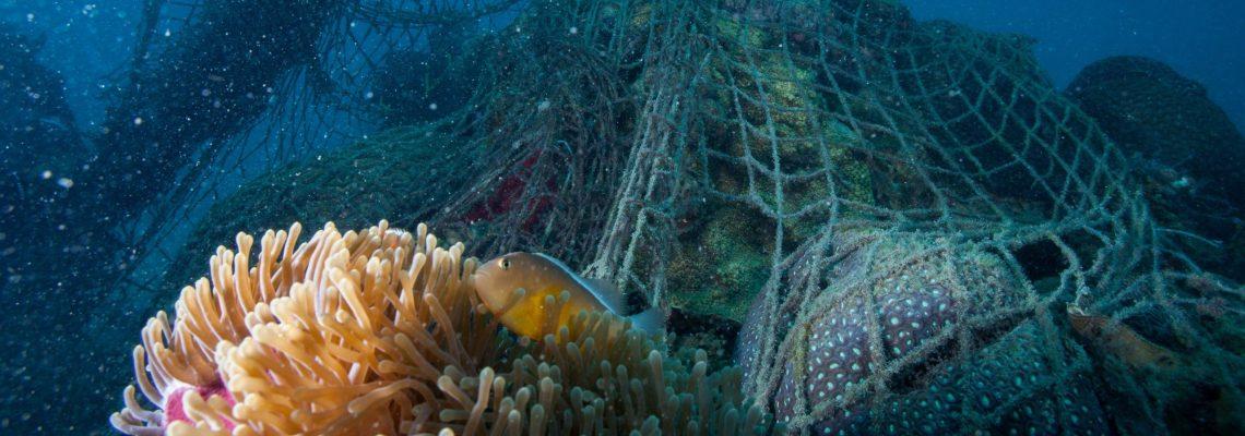 Un millón de toneladas de artes de pesca acaban cada año en océanos, dice WWF
