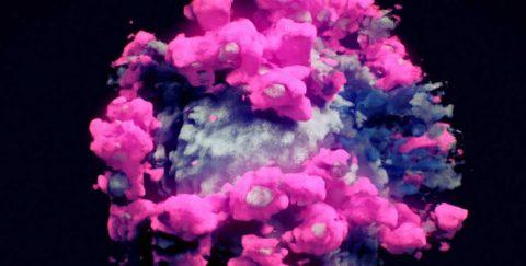 Logran la primera imagen real del virus de la covid en 3 dimensiones