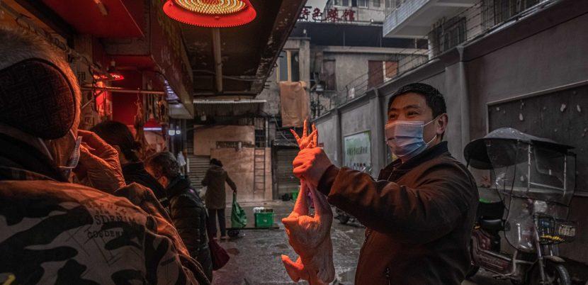 """EE.UU.: China no ha dado """"suficientes datos originales"""" sobre el coronavirus"""